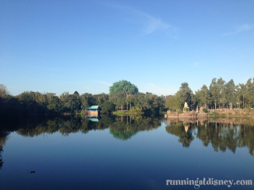 Good Morning Animal Kingdom!