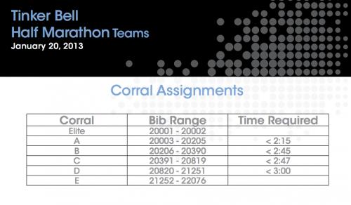 TB Team Corrals