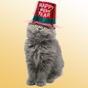 new-year-cat2