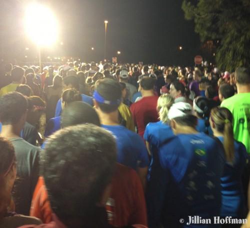 HUGE crowd walking to corrals