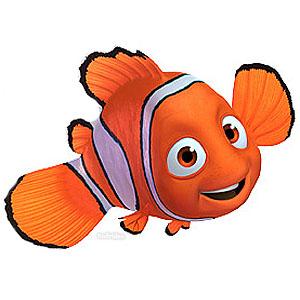 Nemo Found the Northeast