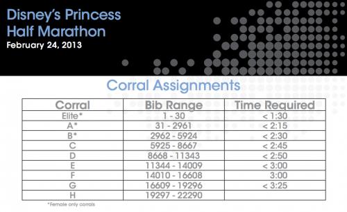 Princess Individual Corrals