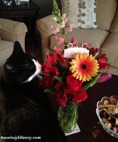Cleo liked the flowers too...