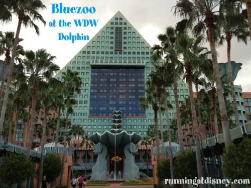 01 Bluezoo_Dolphin