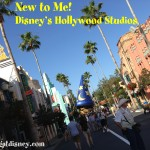 New to Me – Disney's Hollywood Studios