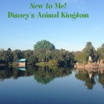 New to Me – Disney's Animal Kingdom