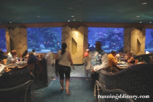 010 Coral Reef_Interior4