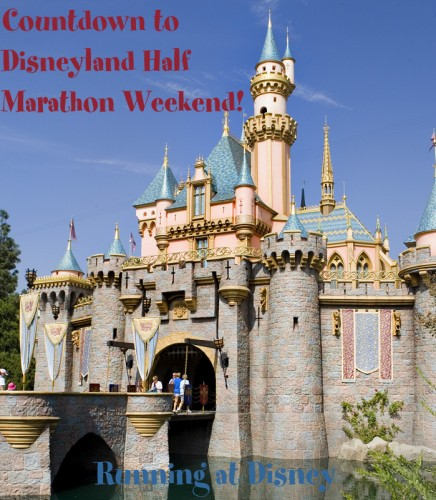 Countdown to Disneyland: A Newbie's Point-of-View