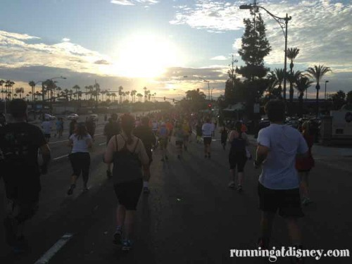 014 DLHalf-Anaheim