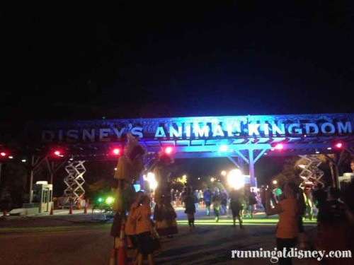 020 Tower-Animal-Kingdom