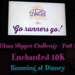 The Inaugural Glass Slipper Challenge Part I – Disney Enchanted 10K