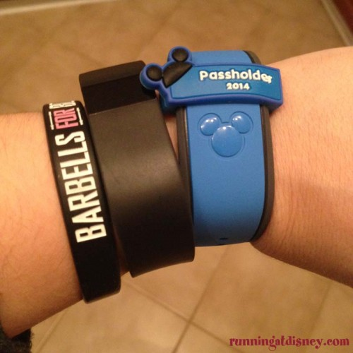 Annual-Passholder-MagicBand