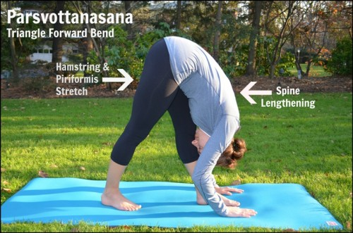 Triangle Forward Bend