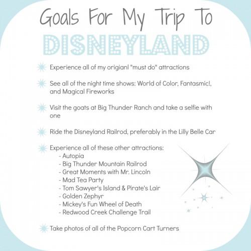 Disneyland-Trip-Goals-800x800