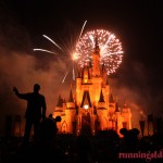Fireworks at Walt Disney World!