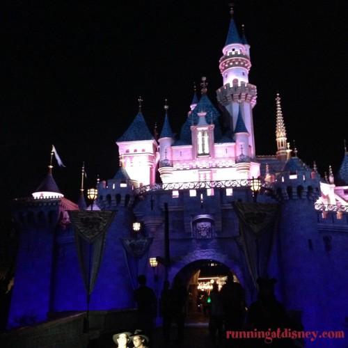 Disneyland-Love-Sleeping-Beuty-Castle