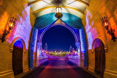 2014-Dumbo-Coast-to-Coast-Alice-24CTC