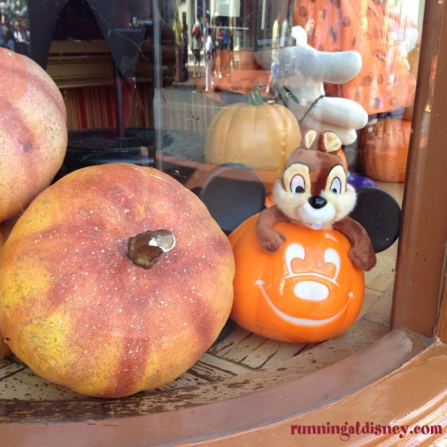 2014-Magic-Kingdom-Fall-Decorations-7