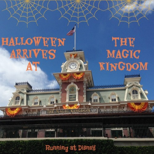 2014-Magic-Kingdom-Fall-Decorations-IG