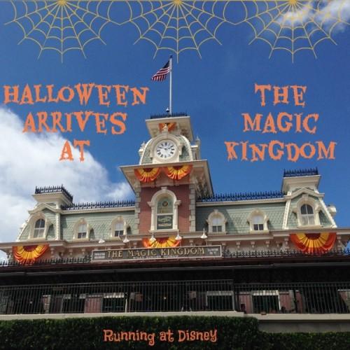 2014-Magic-Kingdom-Fall-Decorations-IG