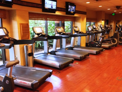 Anaheim-Antics-Animal-Kingdom-Lodge-Zahanati-Fitness-Center-2