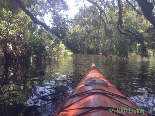 Kayaking-on-the-Sebastian-River-11