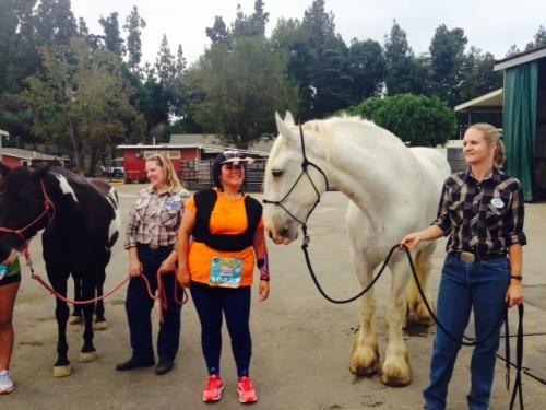 horse-2014-Disneyland-Half-Marathon
