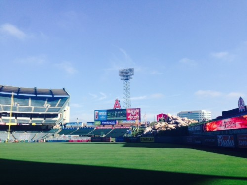 inside stadium-2014-Disneyland-Half-Marathon