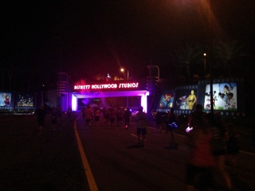 08-Tower-of-Terror-10-Miler-Holly